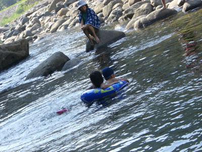 川で泳ぐ:九頭竜川